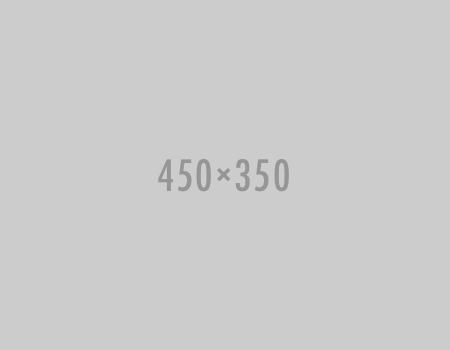 450x350